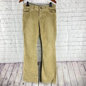AE Super Low Rise Skinny Flare Leg Stretchy Cords